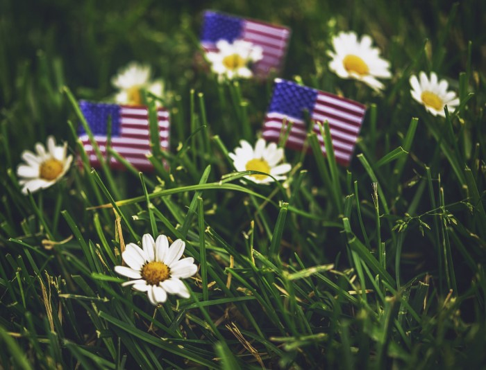Picture of little American flags and daisies
